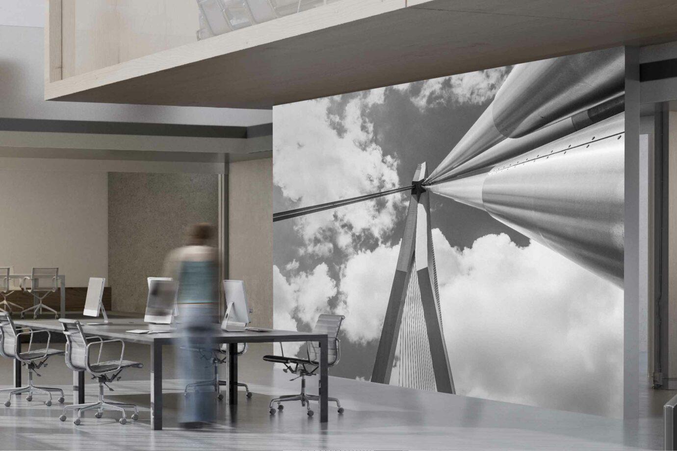 Erasmusbrug - De Zwaan brengt ons in de wolken