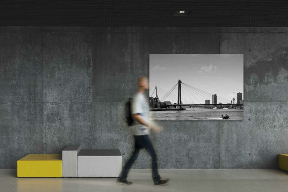 Rotterdam zwart wit foto van ©ZwartZwit010. Willemsbrug en Erasmusbrug