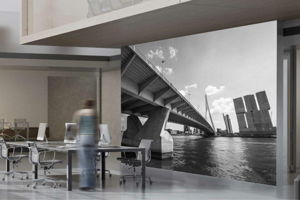 Foto skyline Rotterdam in zwart wit. ©ZwartZwit010. Erasmusbrug en De Rotterdam