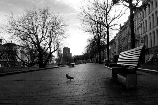 Rotterdam zwart wit foto van ©ZwartWit010. Westersingel