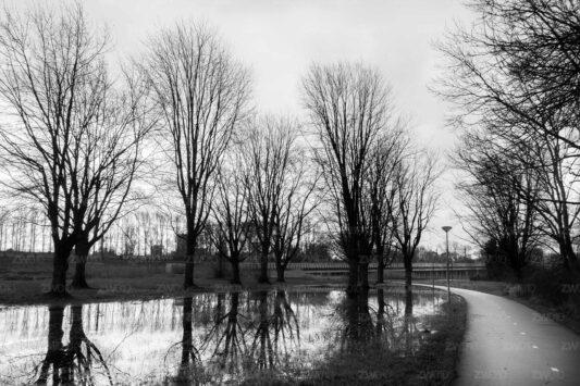 Rotterdam zwart wit foto van ©ZwartWit010. HSL